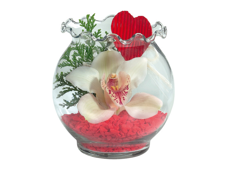 Valentínska orchidea
