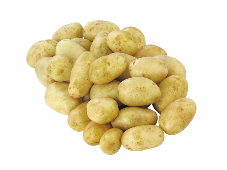Konzumné zemiaky, neskoré