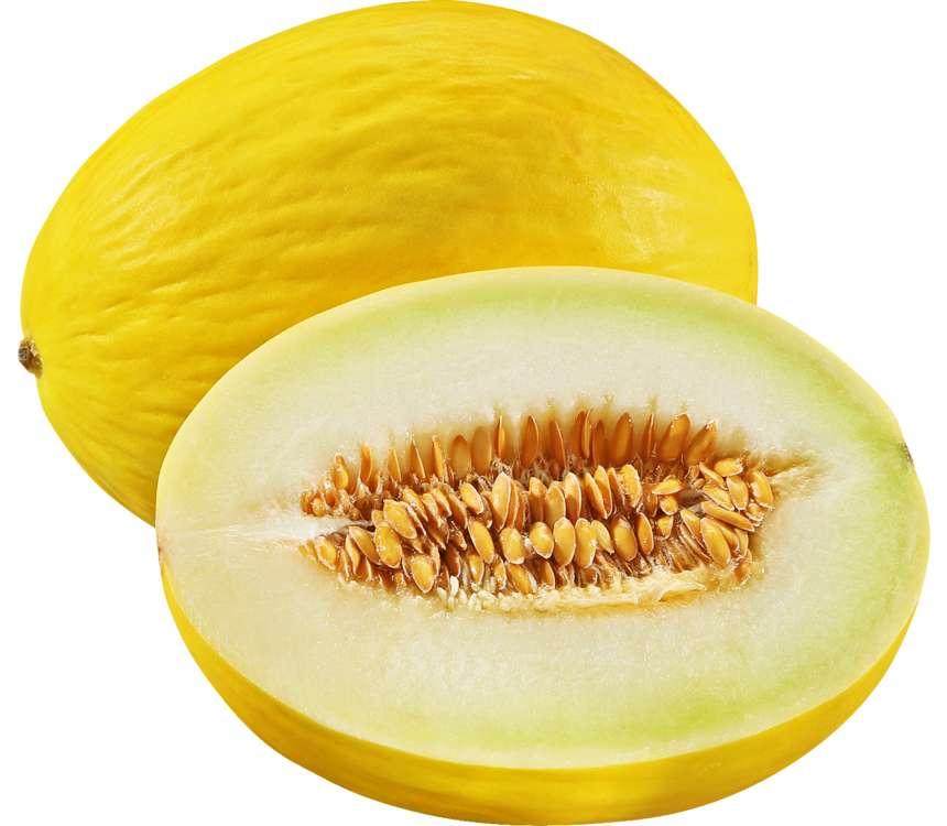 Melón žltý