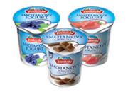 Smotanový jogurt rôzne druhy 145 g
