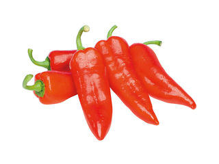 Červená paprika špicatá