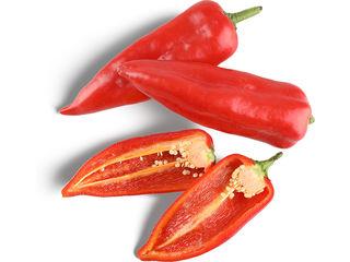 Paprika kapia