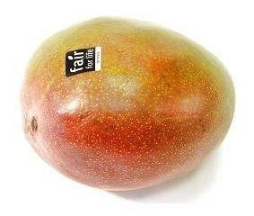 Mango Kent/Keitt ready to eat čerstvé 500g+ 1x1 ks